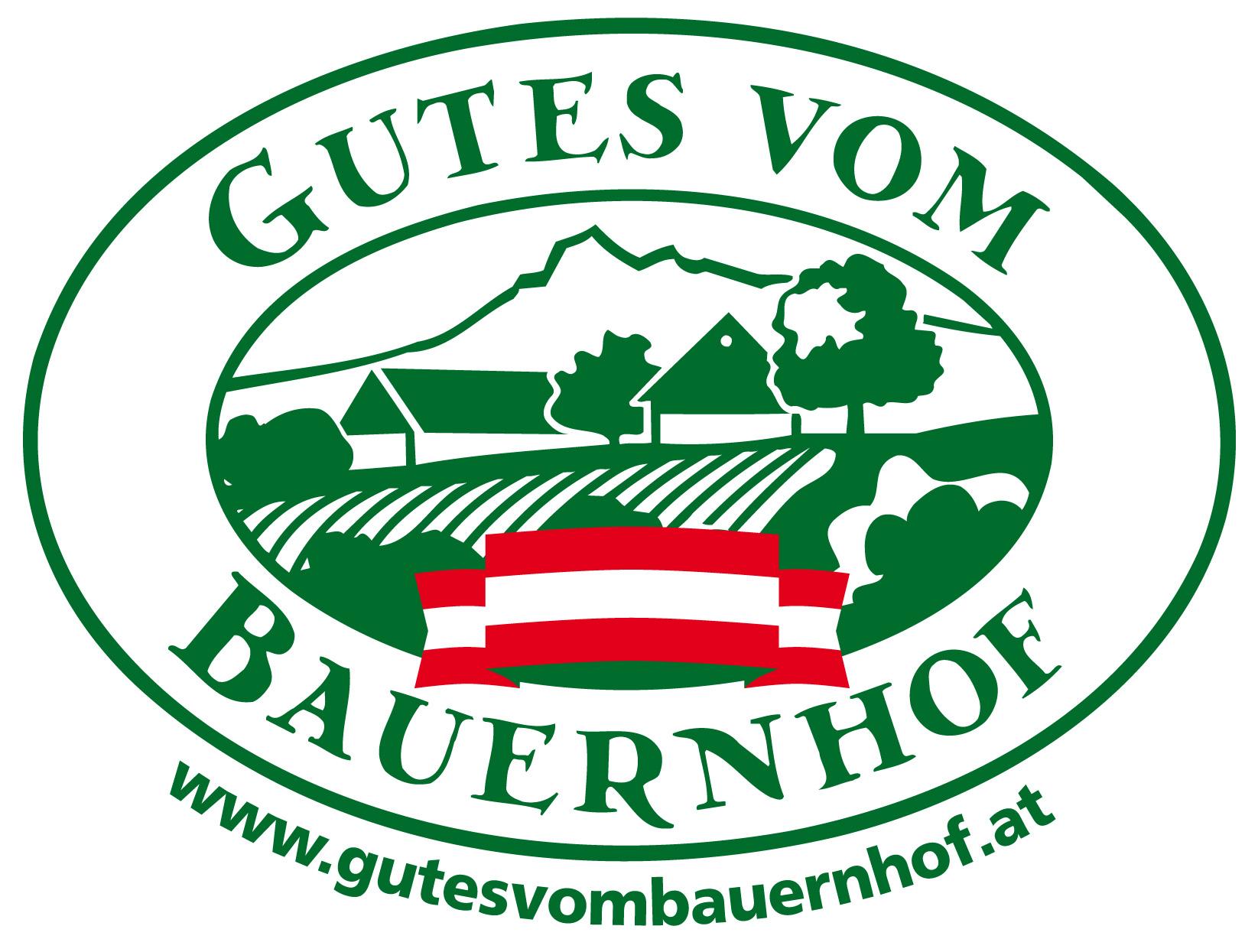 GS-Logo GvB Fahne NEU2 OK
